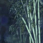 Bamboo (Wacom Pen)